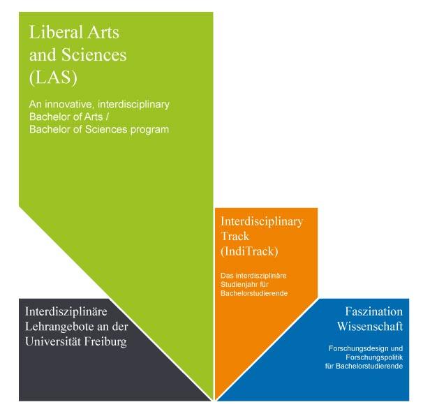 UCF Struktur 2013
