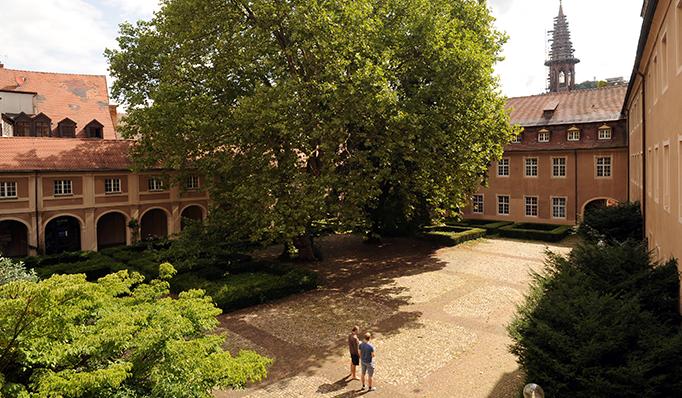 UCF Alte Uni Courtyard