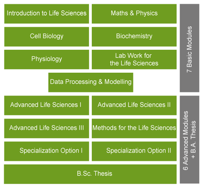Grafik Life Sciences