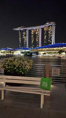 ucf-bag-singapur-web.png
