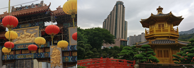 LAS Hong Kong testimonial