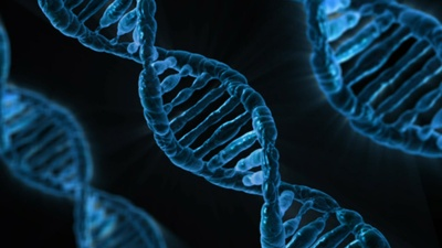 WS 2017-18 DNA Google frei